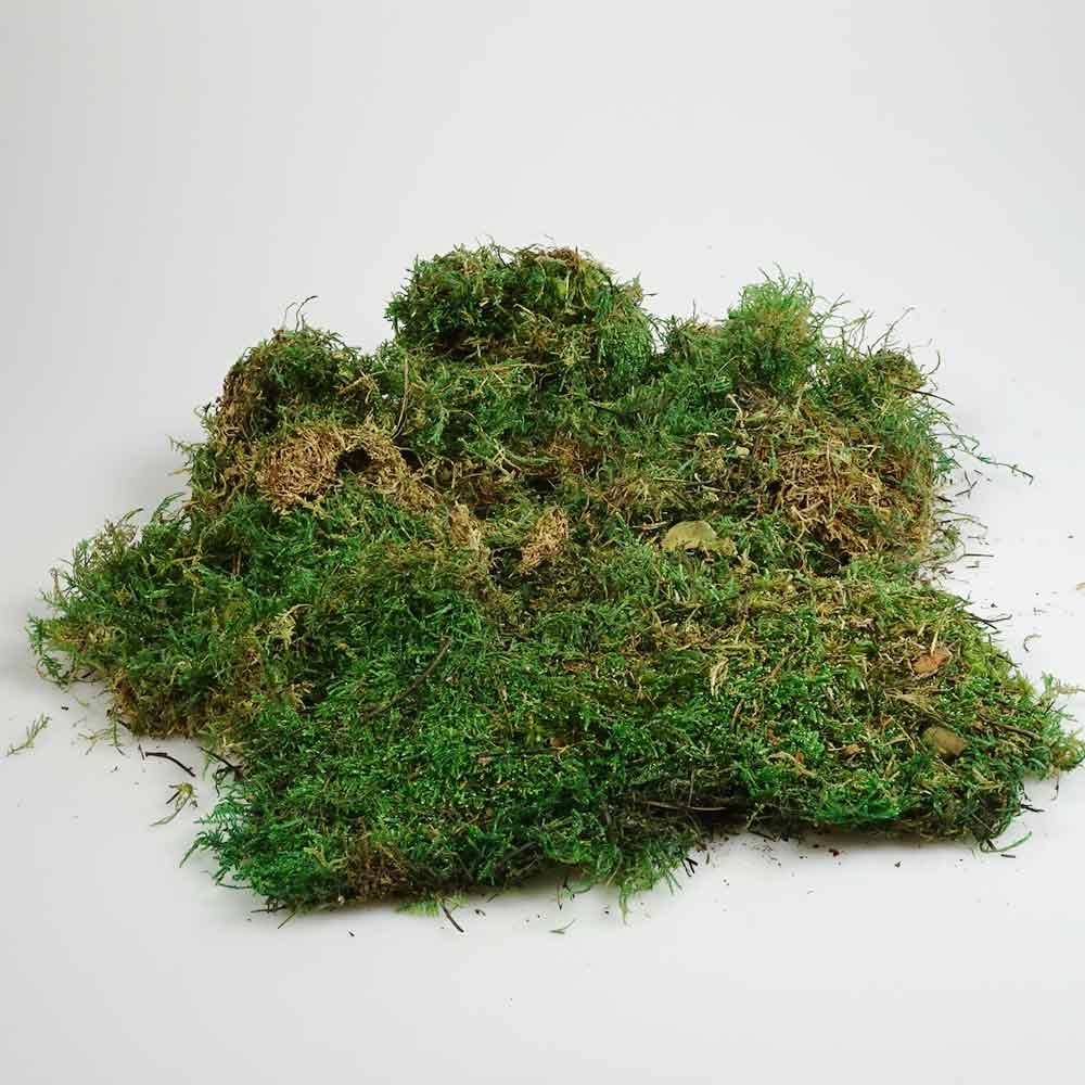 Minigarten Zubehör Gras Bündel 50g im Beutel