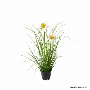 KUNST DAISY GRAS IM TOPF H