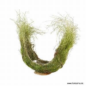 GRAS SCHALE M REBE GESCHWUNGEN