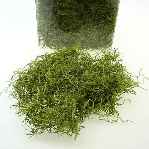 NATUR FOREST MOOS 300 G