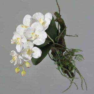 SEIDE ORCHIDEE AVATAR MIT AST